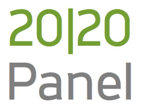 Best Focus Group Company 2020 panel