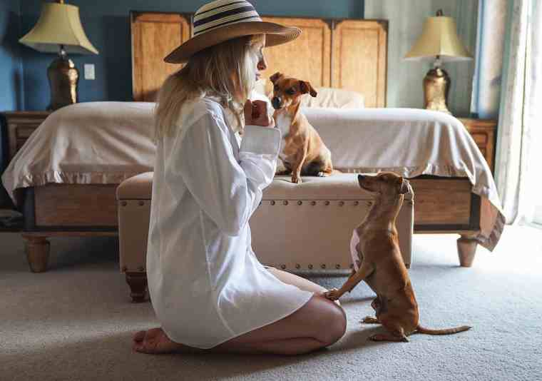Make money by Pet Sitting As A Stay At Home Mom