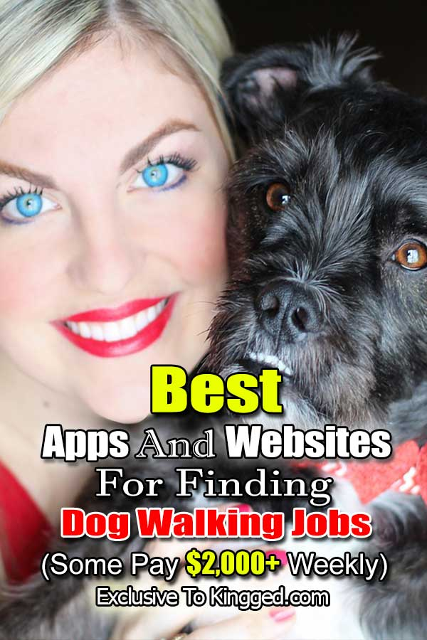 Best Apps And Websites For Finding Dog Walking Jobs