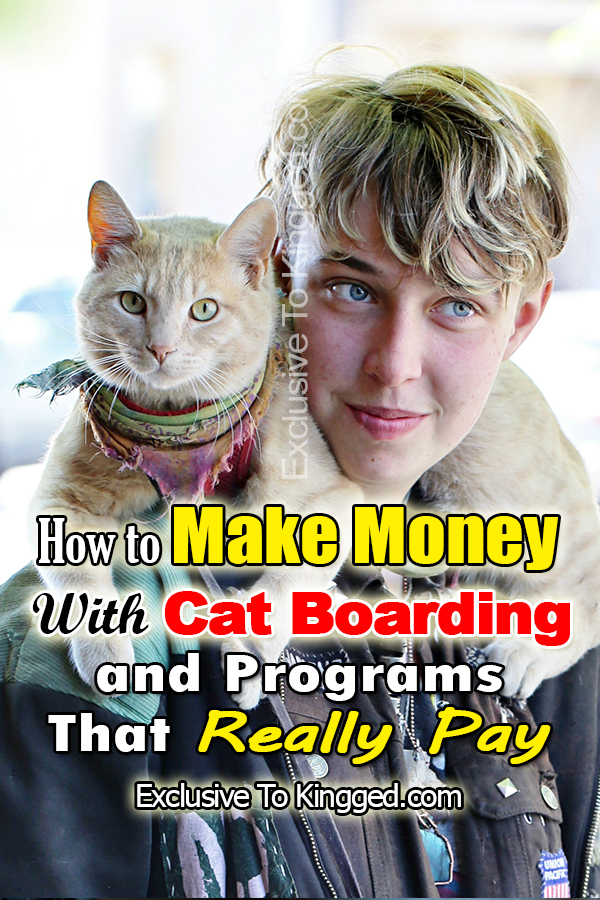 make money with cat boarding