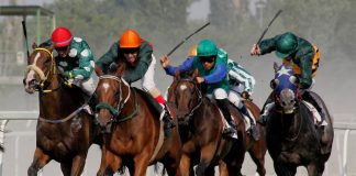 How to Make Money Horse Racing